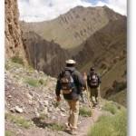Si Mahoma no va a la montaña, la montaña irá a Mahoma